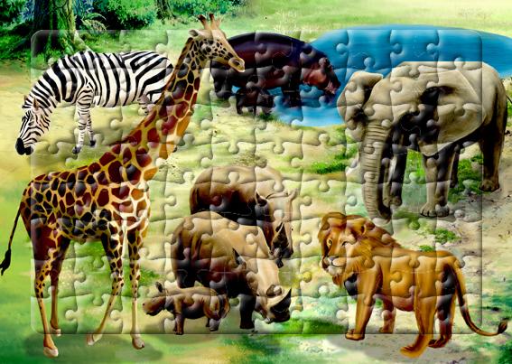 아프리카 초원의 동물들